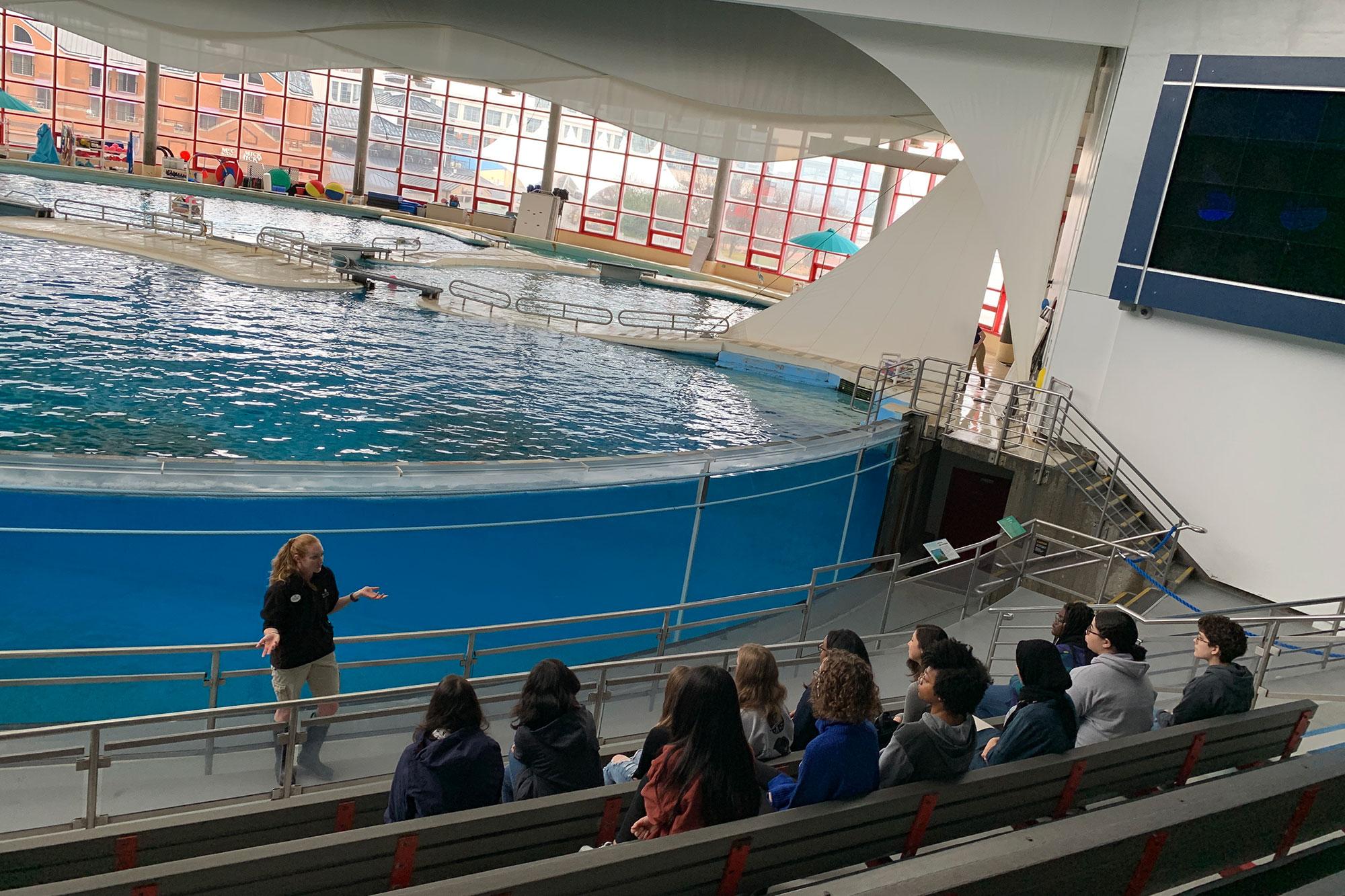 Class at an aquarium whale pool