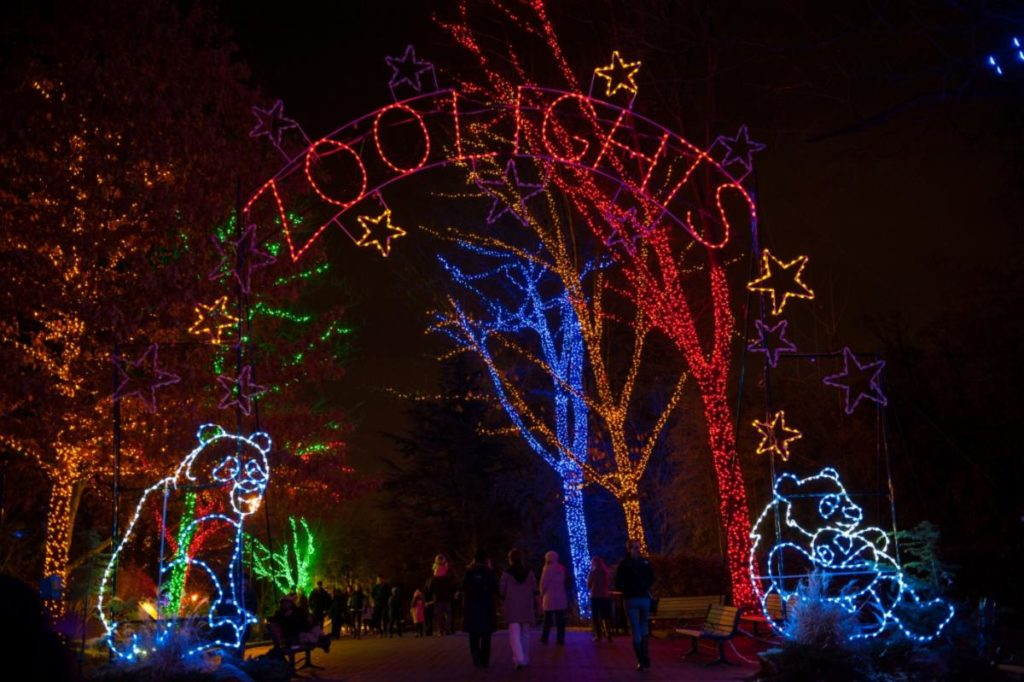 Zoolight at Smithsonian National Zoo